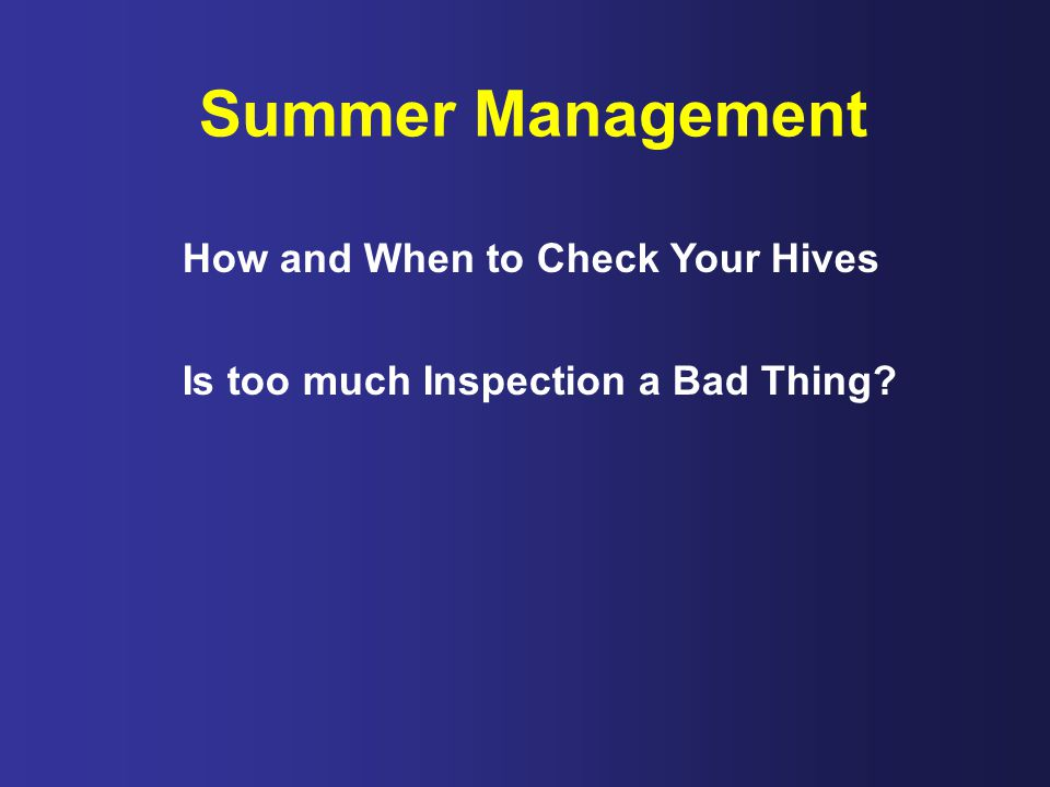 Summer Management How and When to Check Your Hives Is too much Inspection a Bad Thing