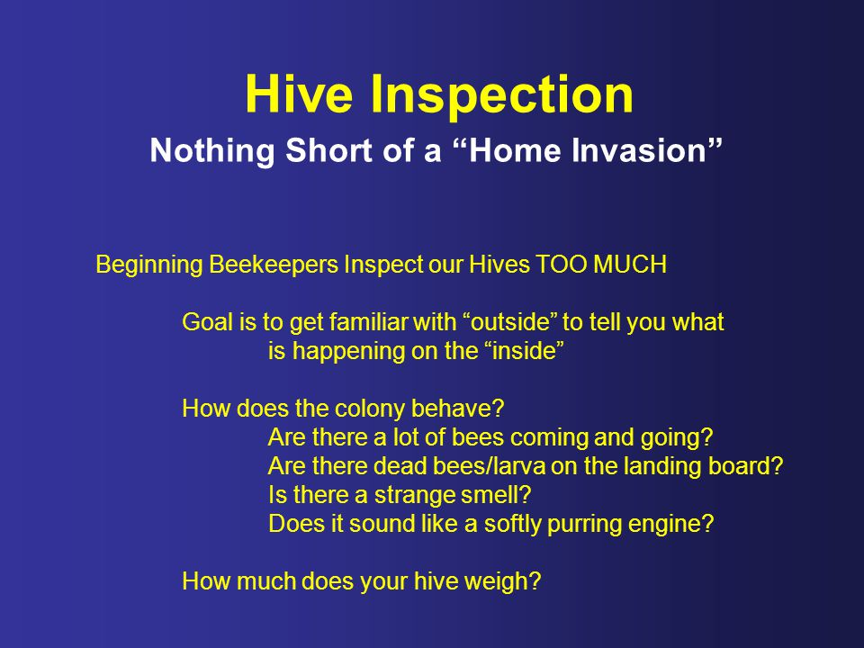 Hive Inspection Nothing Short of a Home Invasion Beginning Beekeepers Inspect our Hives TOO MUCH Goal is to get familiar with outside to tell you what is happening on the inside How does the colony behave.