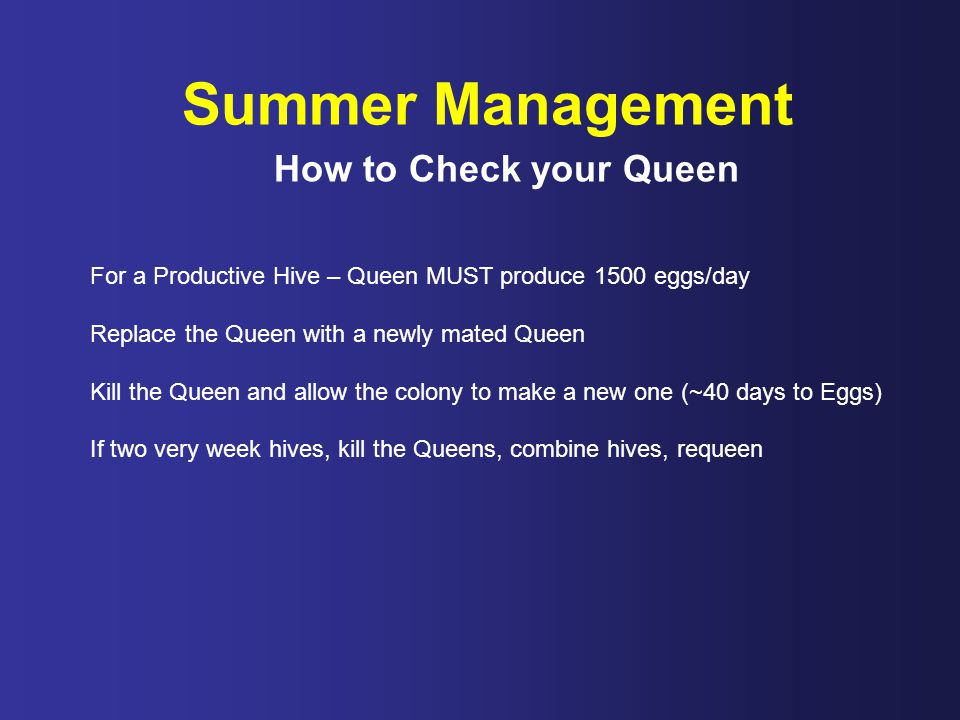 Summer Management How to Check your Queen For a Productive Hive – Queen MUST produce 1500 eggs/day Replace the Queen with a newly mated Queen Kill the Queen and allow the colony to make a new one (~40 days to Eggs) If two very week hives, kill the Queens, combine hives, requeen
