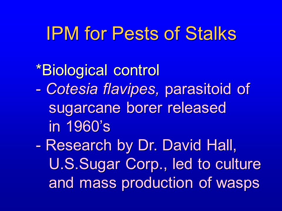 IPM for Pests of Stalks *Biological control - Cotesia flavipes, parasitoid of sugarcane borer released sugarcane borer released in 1960's in 1960's -