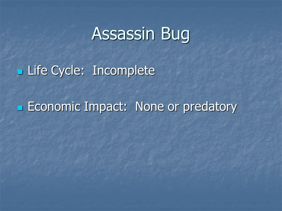 Life Cycle: Incomplete Life Cycle: Incomplete Economic Impact: None or predatory Economic Impact: None or predatory