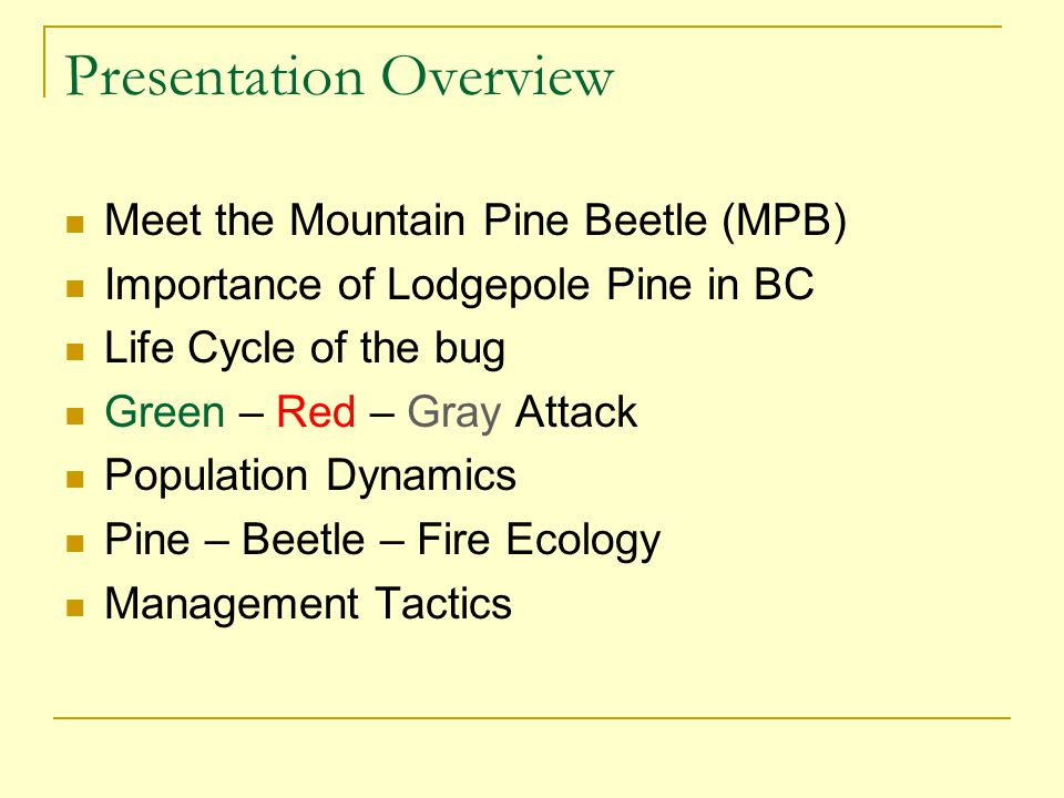 Green – Red – Gray Attack In the year a pine tree is attacked (summer) it remains green The following year it dies … and turns bright red (but beetles are gone) After that the foliage turns gray and falls off Only the green attack trees contain beetles