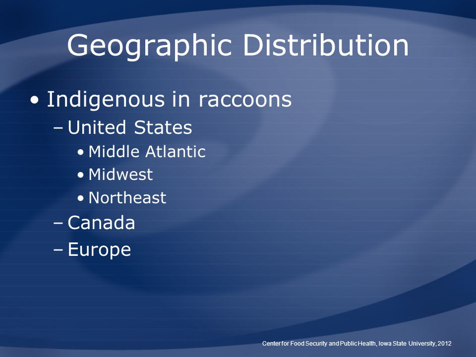 Geographic Distribution Indigenous in raccoons –United States Middle Atlantic Midwest Northeast –Canada –Europe Center for Food Security and Public Health, Iowa State University, 2012