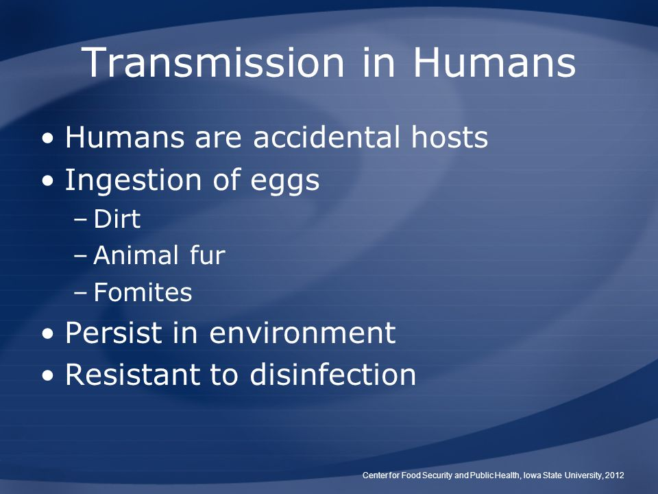 Transmission in Humans Humans are accidental hosts Ingestion of eggs –Dirt –Animal fur –Fomites Persist in environment Resistant to disinfection Center for Food Security and Public Health, Iowa State University, 2012