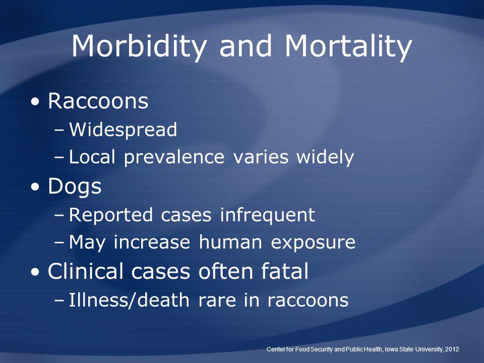 Morbidity and Mortality Raccoons –Widespread –Local prevalence varies widely Dogs –Reported cases infrequent –May increase human exposure Clinical cas