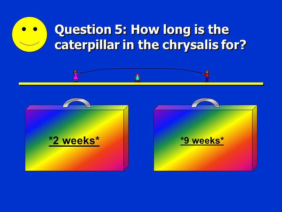 Good Answer 4 Next Question You got it. The second stage of the life cycle is the larva stage.