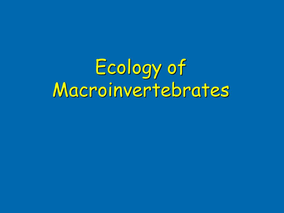 Ecology of Macroinvertebrates