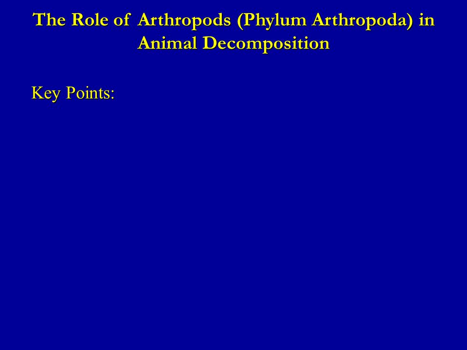 The Role of Arthropods (Phylum Arthropoda) in Animal Decomposition Key Points: