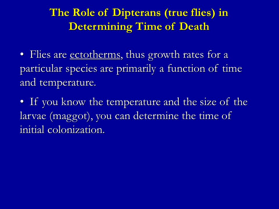 The Role of Dipterans (true flies) in Determining Time of Death Flies are ectotherms, thus growth rates for a particular species are primarily a function of time and temperature.