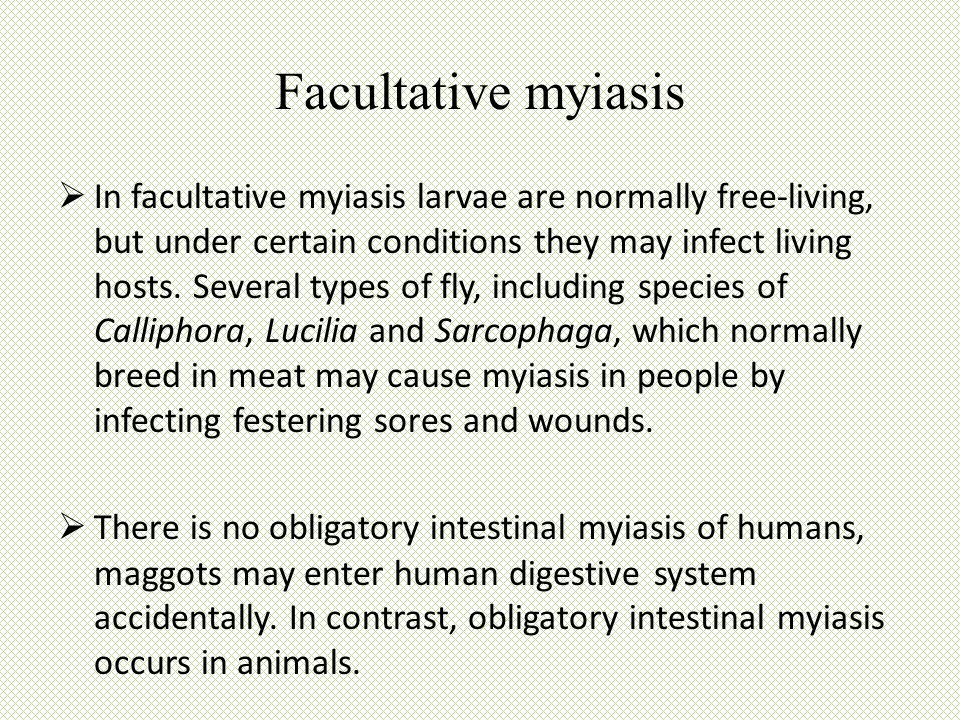  In facultative myiasis larvae are normally free-living, but under certain conditions they may infect living hosts. Several types of fly, including s