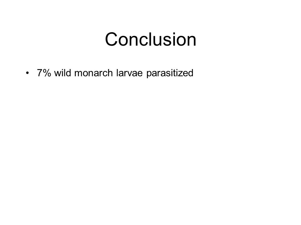 Conclusion 7% wild monarch larvae parasitized
