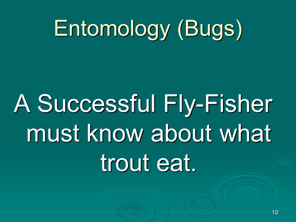 10 Entomology (Bugs) A Successful Fly-Fisher must know about what trout eat.