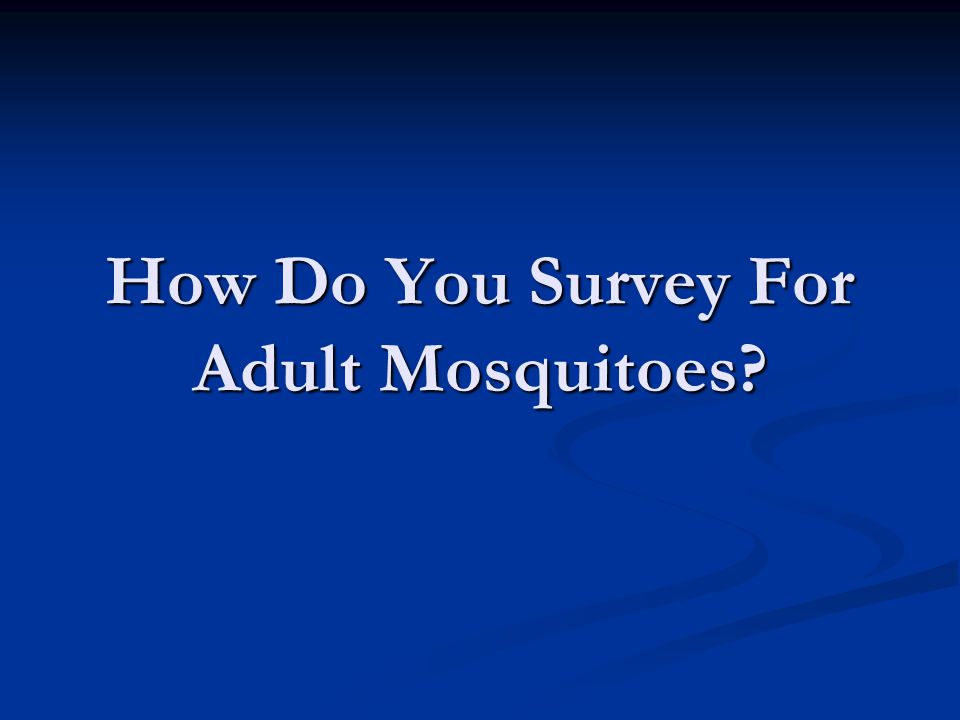 How Do You Survey For Adult Mosquitoes
