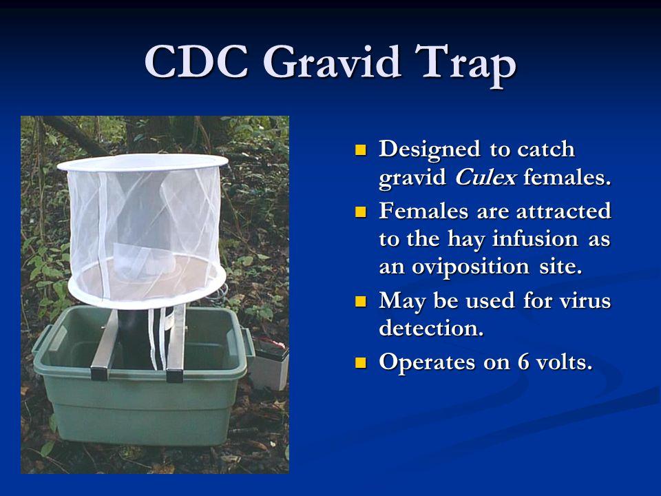 CDC Gravid Trap Designed to catch gravid Culex females.