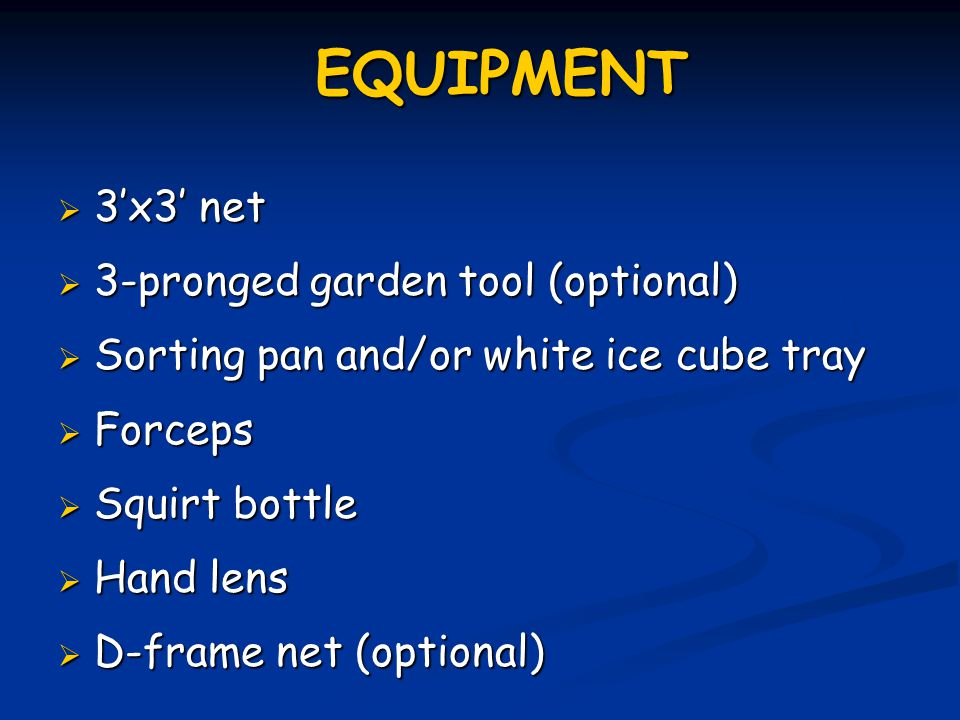 EQUIPMENT  3'x3' net  3-pronged garden tool (optional)  Sorting pan and/or white ice cube tray  Forceps  Squirt bottle  Hand lens  D-frame net (optional)