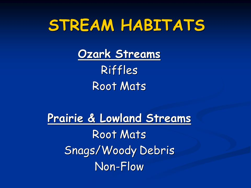 STREAM HABITATS Ozark Streams Riffles Root Mats Prairie & Lowland Streams Root Mats Snags/Woody Debris Non-Flow