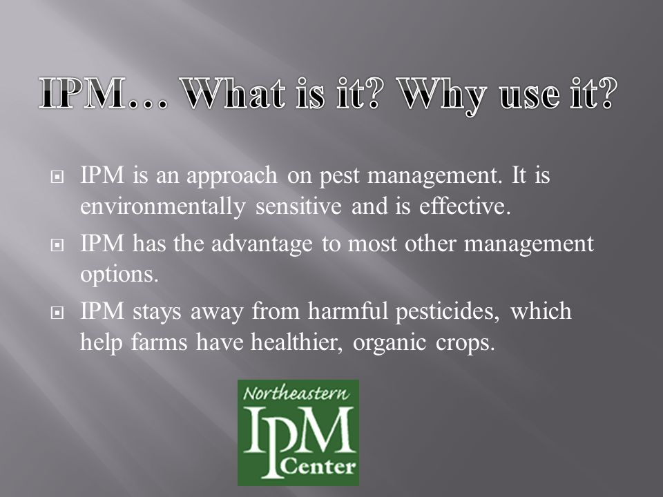  IPM is an approach on pest management. It is environmentally sensitive and is effective.