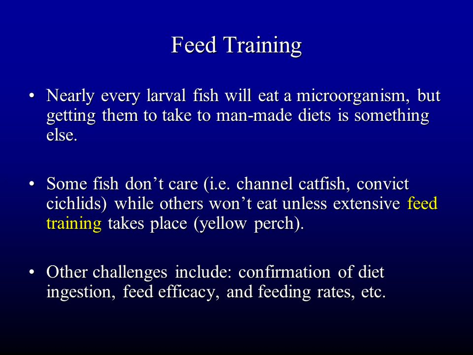 Feed Training Nearly every larval fish will eat a microorganism, but getting them to take to man-made diets is something else.Nearly every larval fish