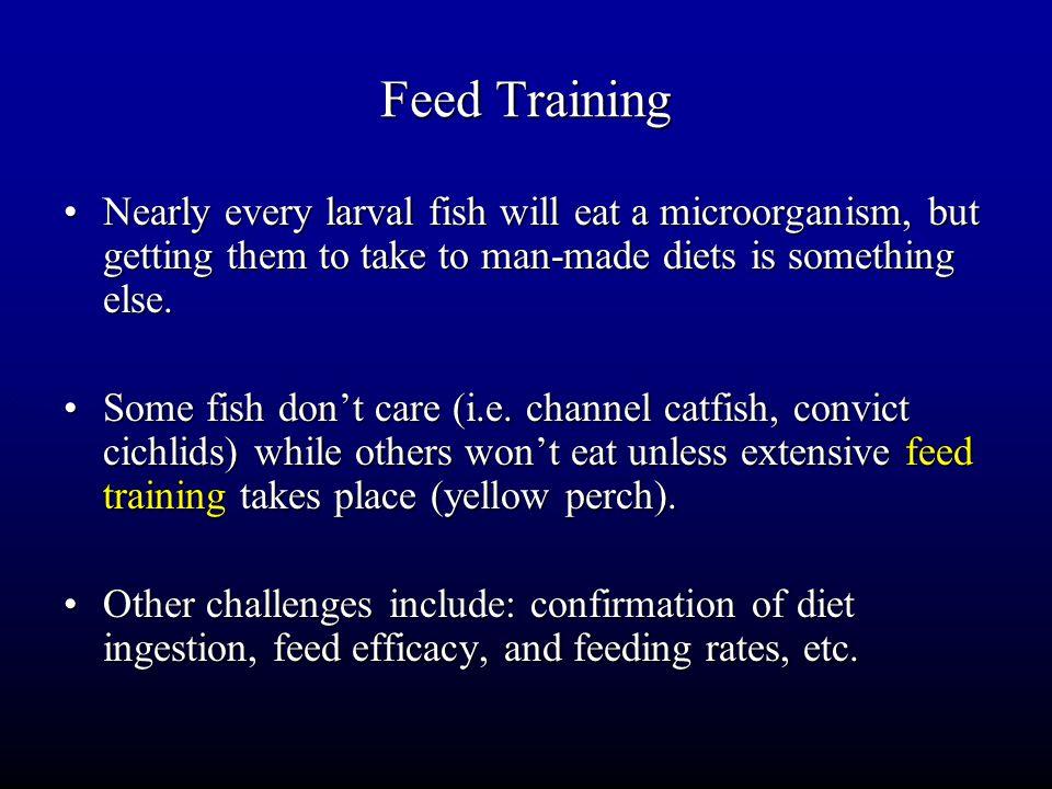 Feed Training continued… Feed training isn't difficult, but time consuming.Feed training isn't difficult, but time consuming.