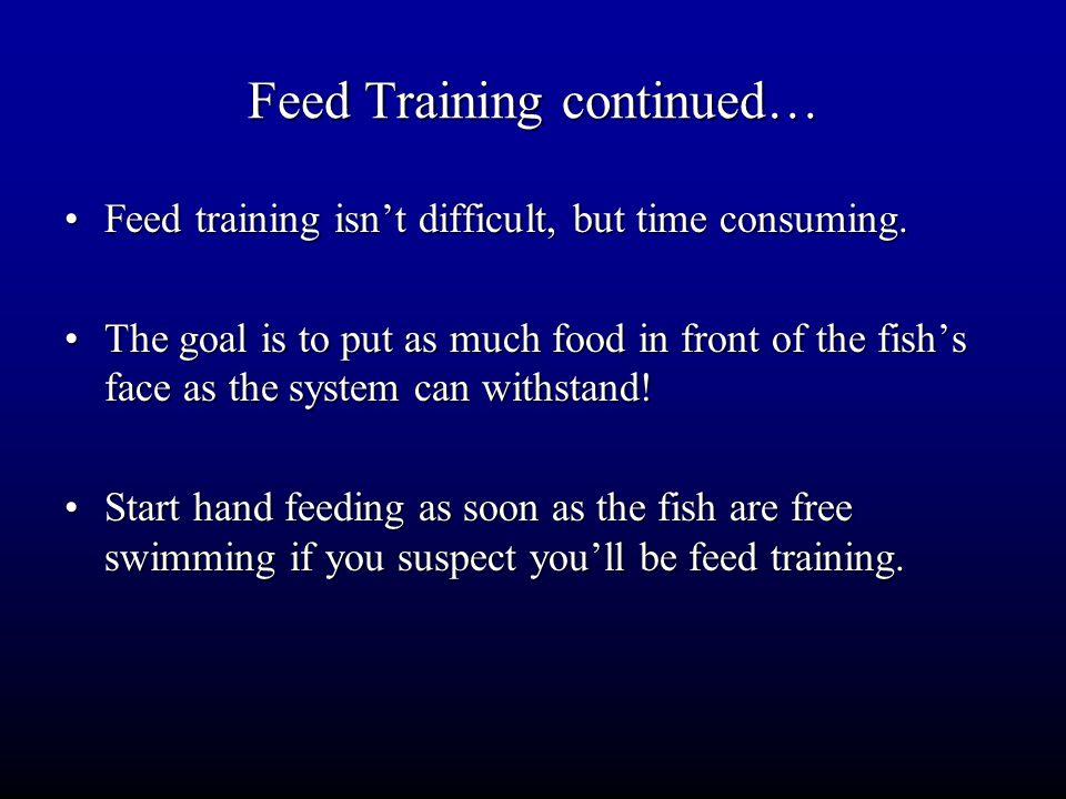 Feed Training continued… Feed training isn't difficult, but time consuming.Feed training isn't difficult, but time consuming. The goal is to put as mu