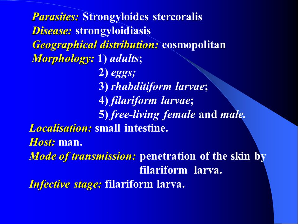 Parasites: Parasites: Strongyloides stercoralis Disease: Disease: strongyloidiasis Geographical distribution: Geographical distribution: cosmopolitan