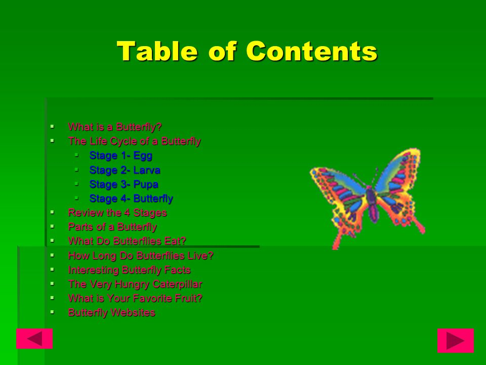 Table of Contents  What is a Butterfly.