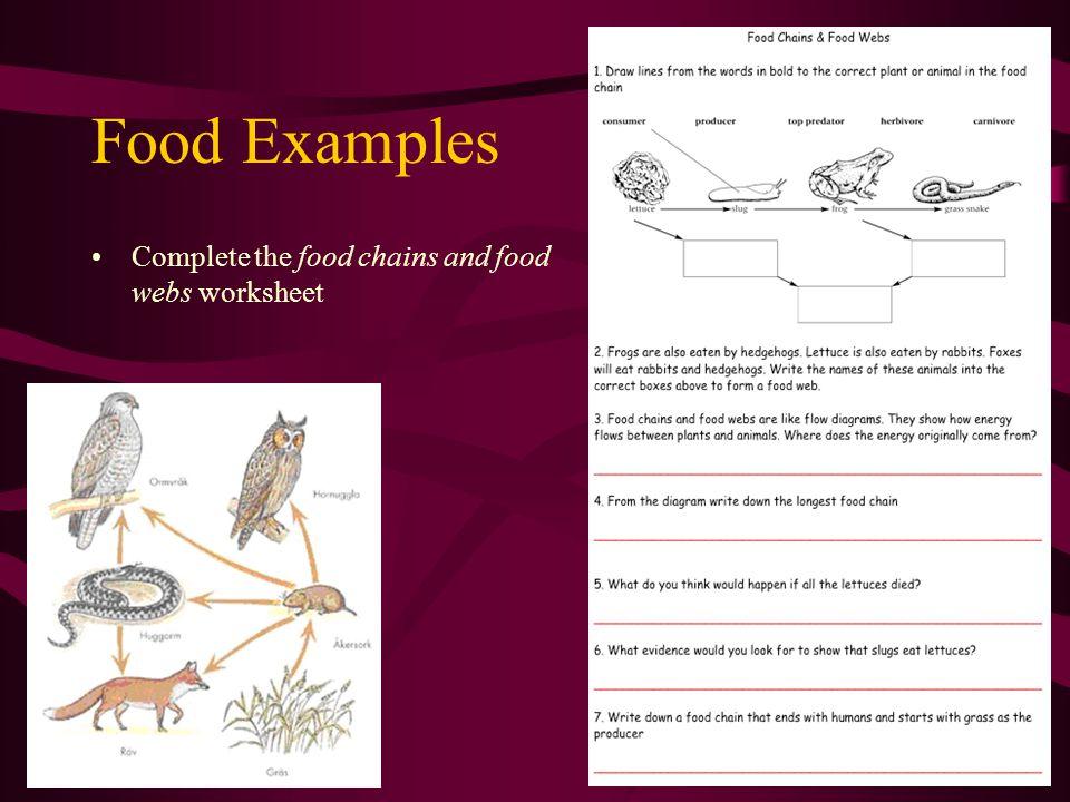 Carnivore, Herbivore Or Omnivore.Are the following carnivores, herbivores or omnivores.