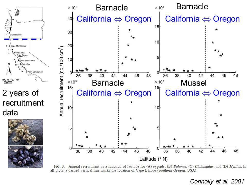 Connolly et al. 2001 Barnacle MusselBarnacle California  Oregon 2 years of recruitment data