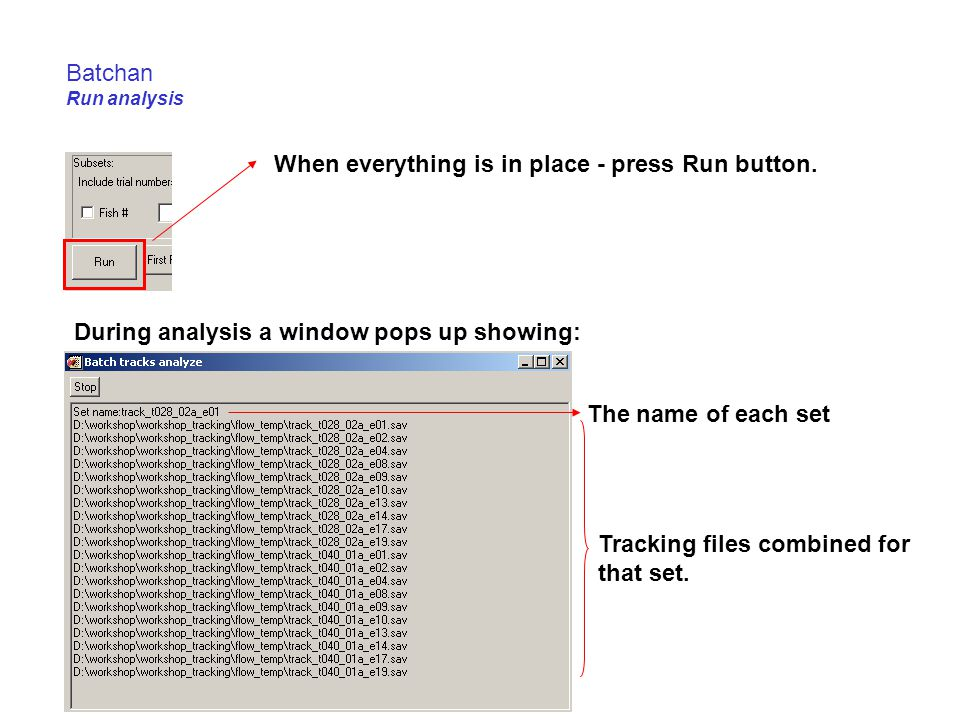 Batchan Run analysis When everything is in place - press Run button. The name of each set Tracking files combined for that set. During analysis a wind