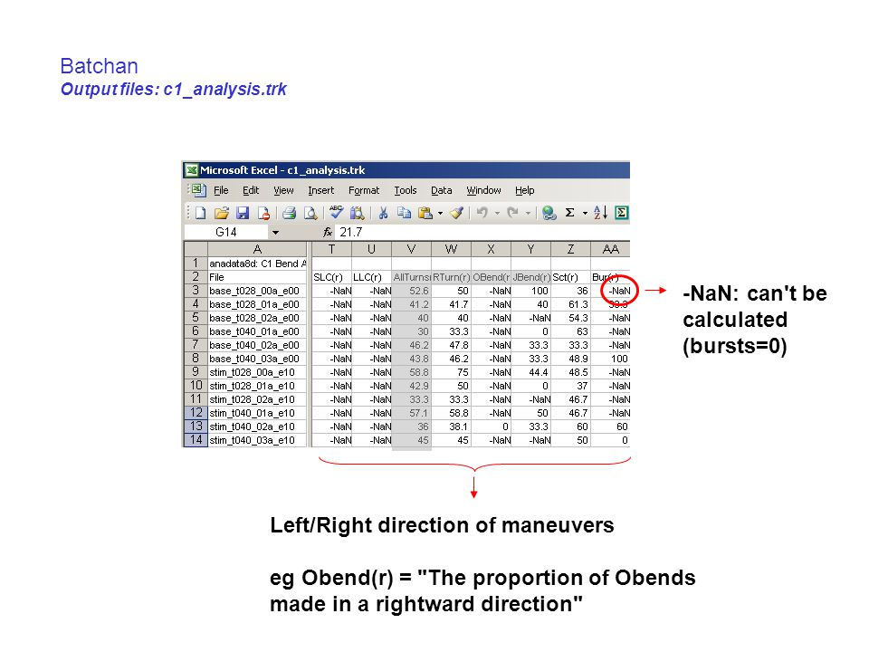 Batchan Output files: c1_analysis.trk Left/Right direction of maneuvers eg Obend(r) = The proportion of Obends made in a rightward direction -NaN: can t be calculated (bursts=0)