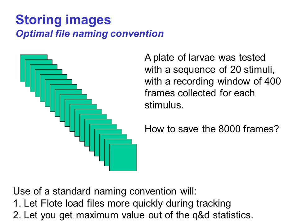 Storing images Optimal file naming convention A plate of larvae was tested with a sequence of 20 stimuli, with a recording window of 400 frames collected for each stimulus.