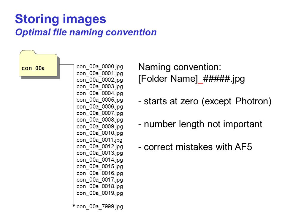 Storing images Optimal file naming convention con_00a Naming convention: [Folder Name]_#####.jpg - starts at zero (except Photron) - number length not important - correct mistakes with AF5 con_00a_0000.jpg con_00a_0001.jpg con_00a_0002.jpg con_00a_0003.jpg con_00a_0004.jpg con_00a_0005.jpg con_00a_0006.jpg con_00a_0007.jpg con_00a_0008.jpg con_00a_0009.jpg con_00a_0010.jpg con_00a_0011.jpg con_00a_0012.jpg con_00a_0013.jpg con_00a_0014.jpg con_00a_0015.jpg con_00a_0016.jpg con_00a_0017.jpg con_00a_0018.jpg con_00a_0019.jpg con_00a_7999.jpg