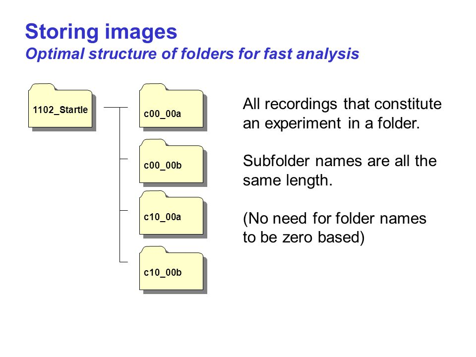 Storing images Optimal structure of folders for fast analysis 1102_Startle c00_00a c00_00b c10_00a c10_00b All recordings that constitute an experimen