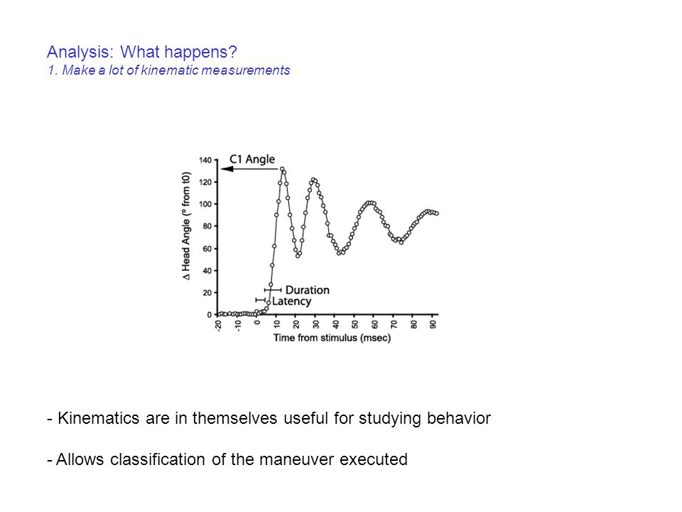 Analysis: What happens? 1. Make a lot of kinematic measurements - Kinematics are in themselves useful for studying behavior - Allows classification of