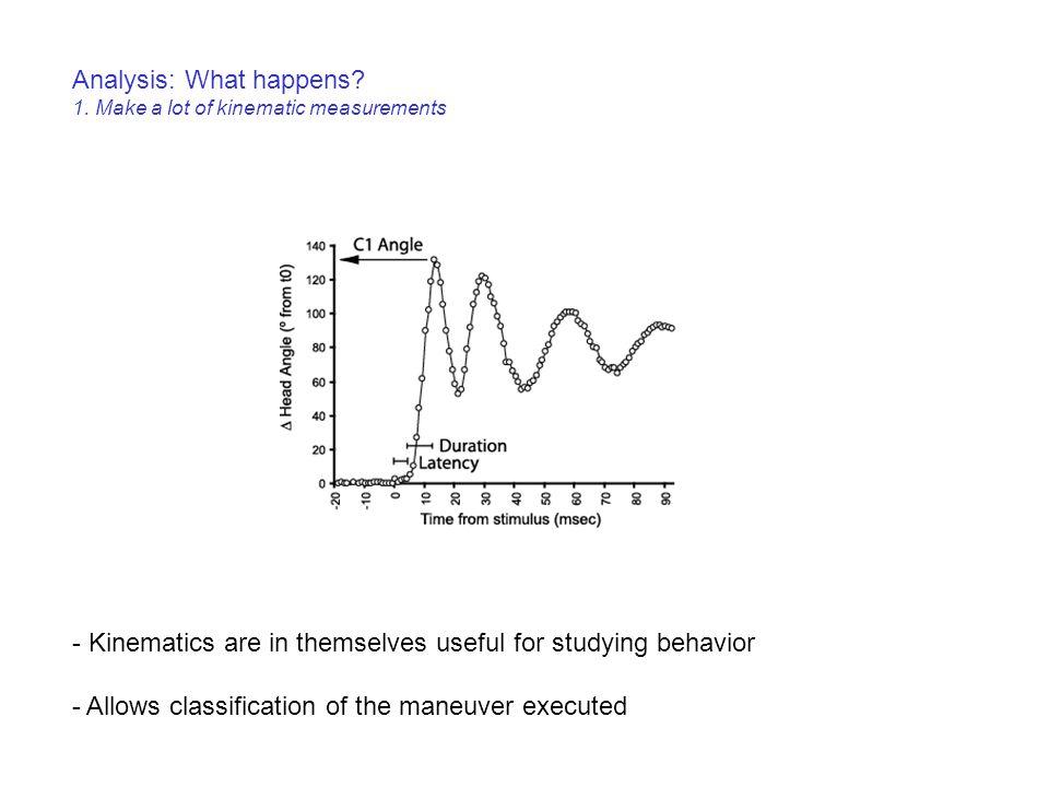 Analysis: What happens.1.