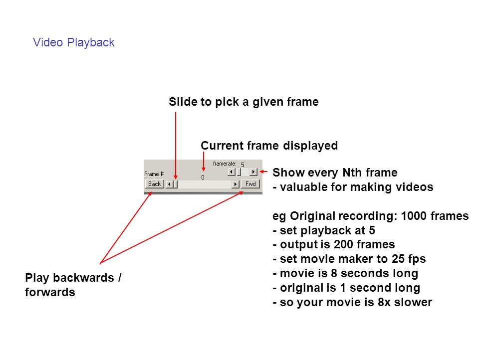 Video Playback Play backwards / forwards Current frame displayed Show every Nth frame - valuable for making videos eg Original recording: 1000 frames