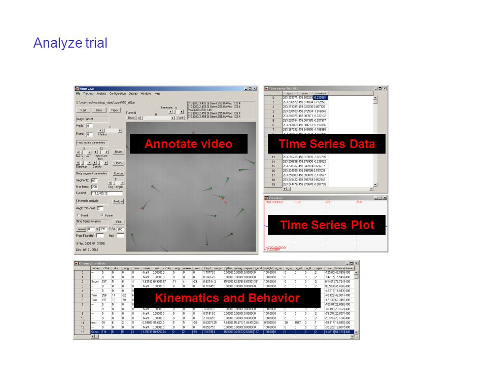 Analyze trial Annotate video Kinematics and Behavior Time Series Data Time Series Plot