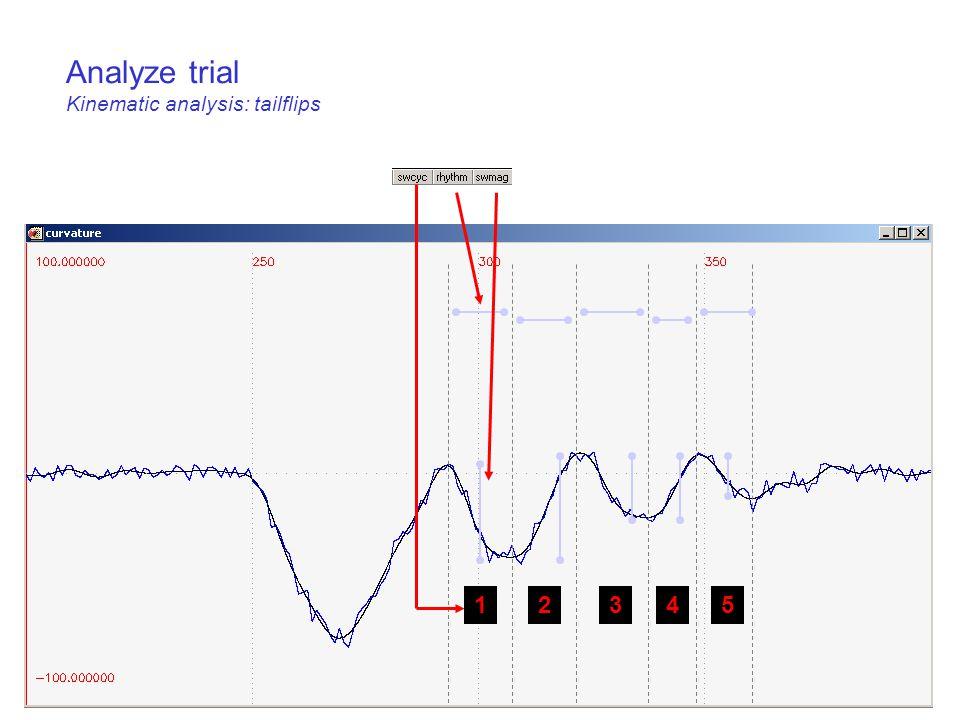 Analyze trial Kinematic analysis: tailflips 12345