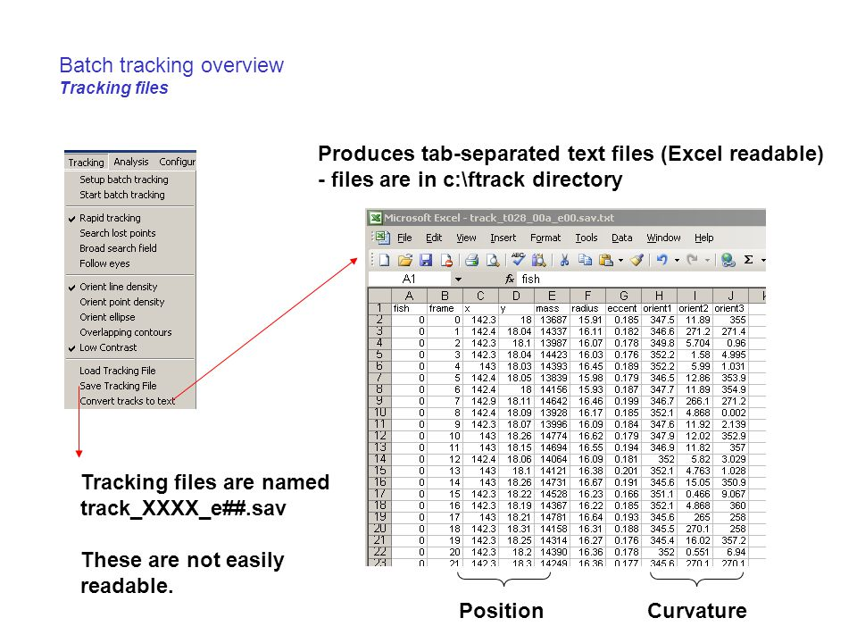 Batch tracking overview Tracking files Produces tab-separated text files (Excel readable) - files are in c:\ftrack directory PositionCurvature Tracking files are named track_XXXX_e##.sav These are not easily readable.