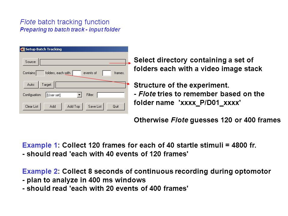 Flote batch tracking function Preparing to batch track - input folder Select directory containing a set of folders each with a video image stack Struc