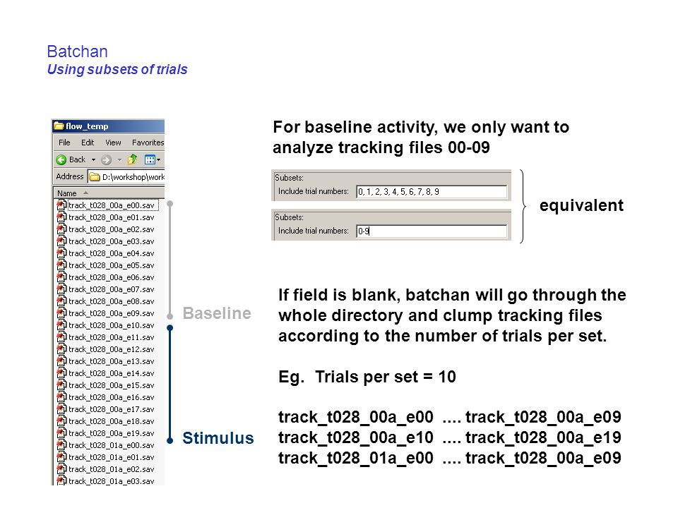 Batchan Using subsets of trials Baseline Stimulus For baseline activity, we only want to analyze tracking files 00-09 equivalent If field is blank, ba
