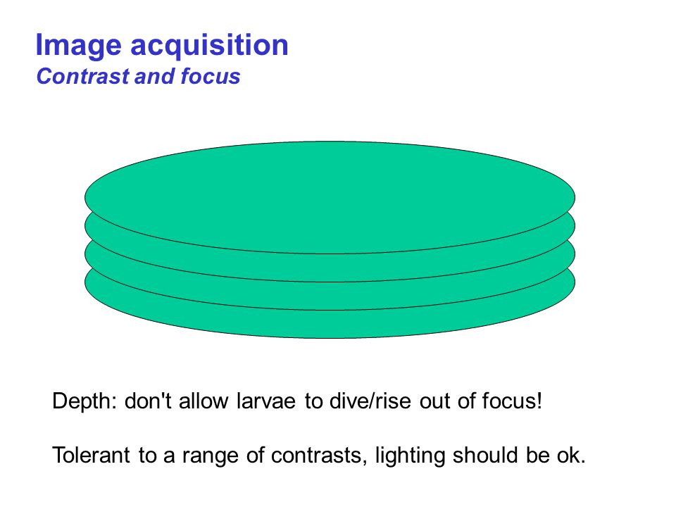 Image acquisition Contrast and focus Depth: don t allow larvae to dive/rise out of focus.