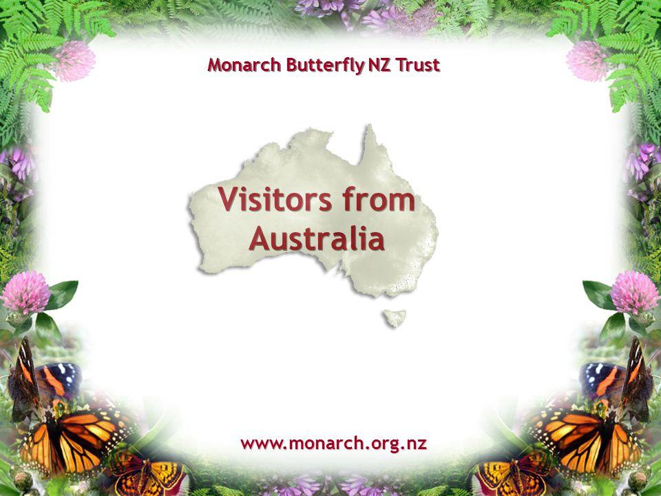Visitors from Australia www.monarch.org.nz Monarch Butterfly NZ Trust