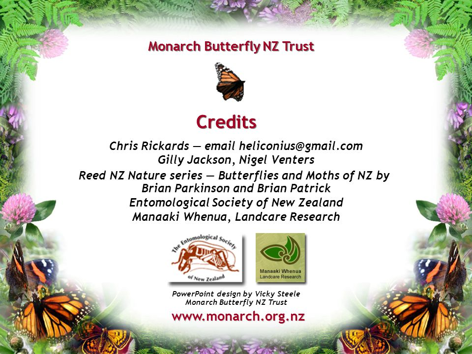 Credits Monarch Butterfly NZ Trust Chris Rickards — email heliconius@gmail.com Gilly Jackson, Nigel Venters Reed NZ Nature series — Butterflies and Mo
