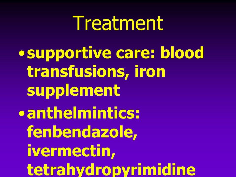 Treatment supportive care: blood transfusions, iron supplement anthelmintics: fenbendazole, ivermectin, tetrahydropyrimidine (pyrantel)