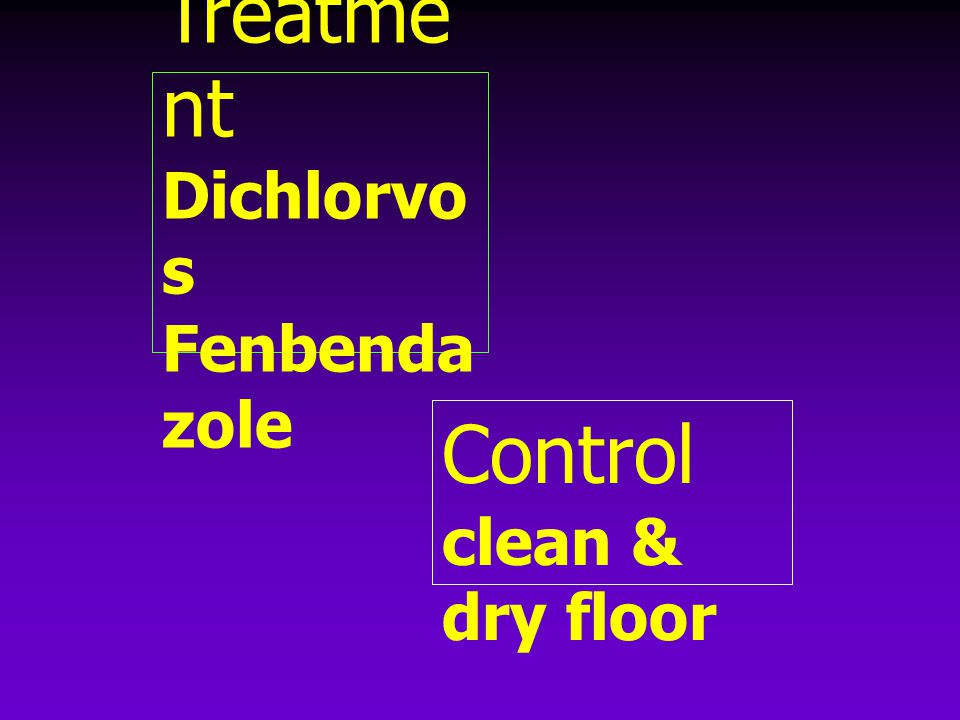Treatme nt Dichlorvo s Fenbenda zole Control clean & dry floor