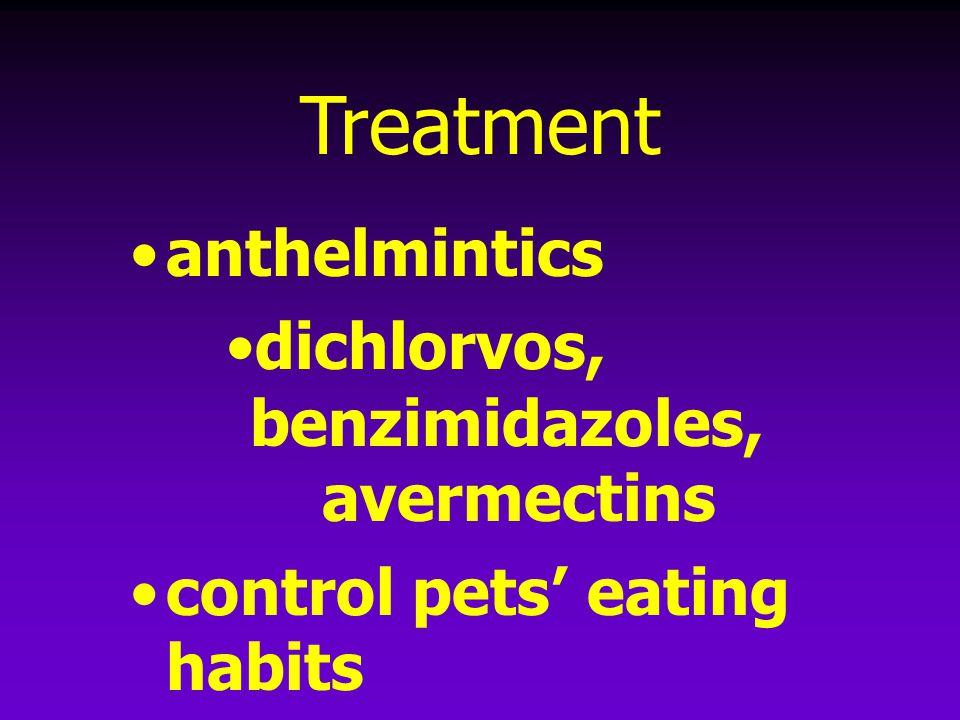 Treatment anthelmintics dichlorvos, benzimidazoles, avermectins control pets' eating habits
