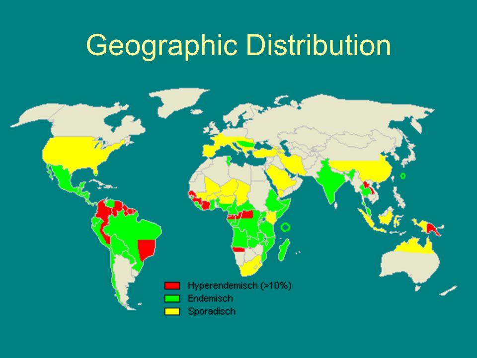 Geographic Distribution