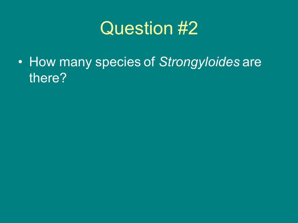Question #2 How many species of Strongyloides are there?