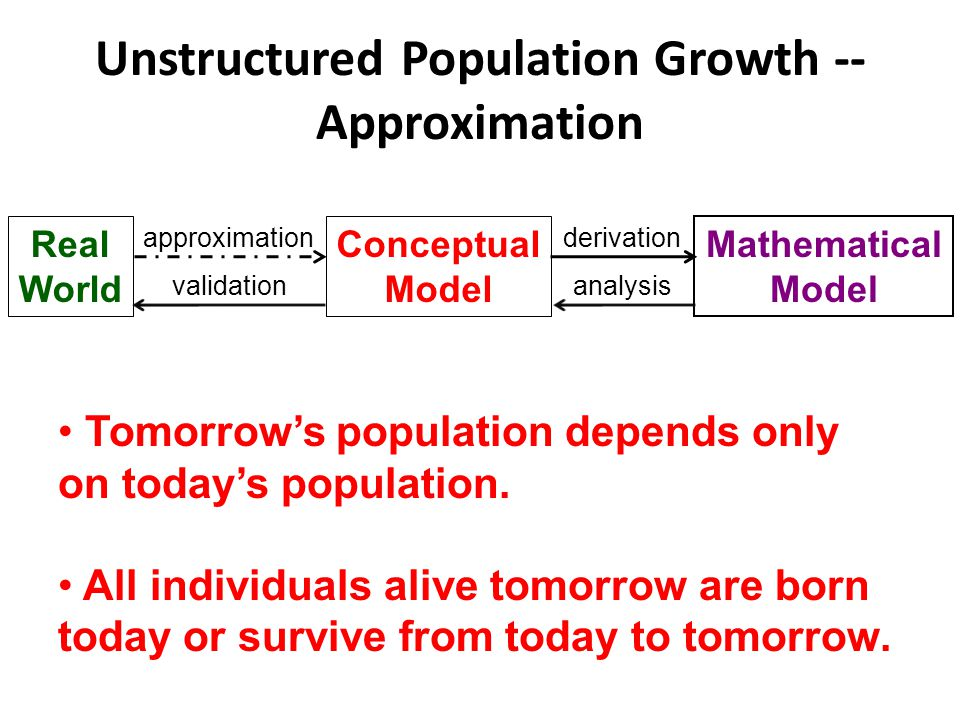Unstructured Population Growth -- Approximation Tomorrow's population depends only on today's population.